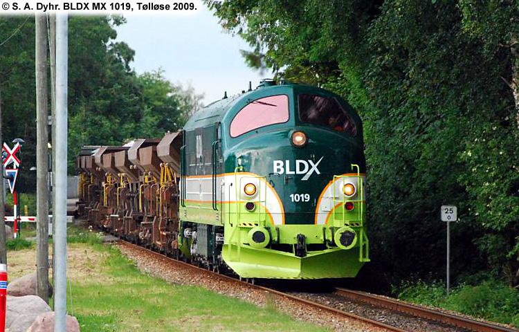 BLDX MX 1019