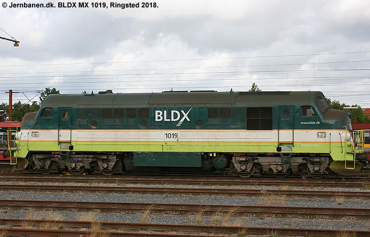 BLDX MX1019