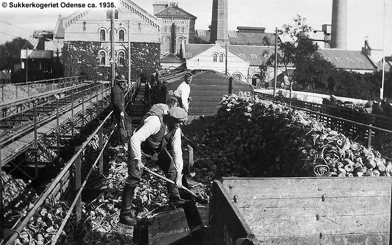 Sukkerkogeriet Odense 1935